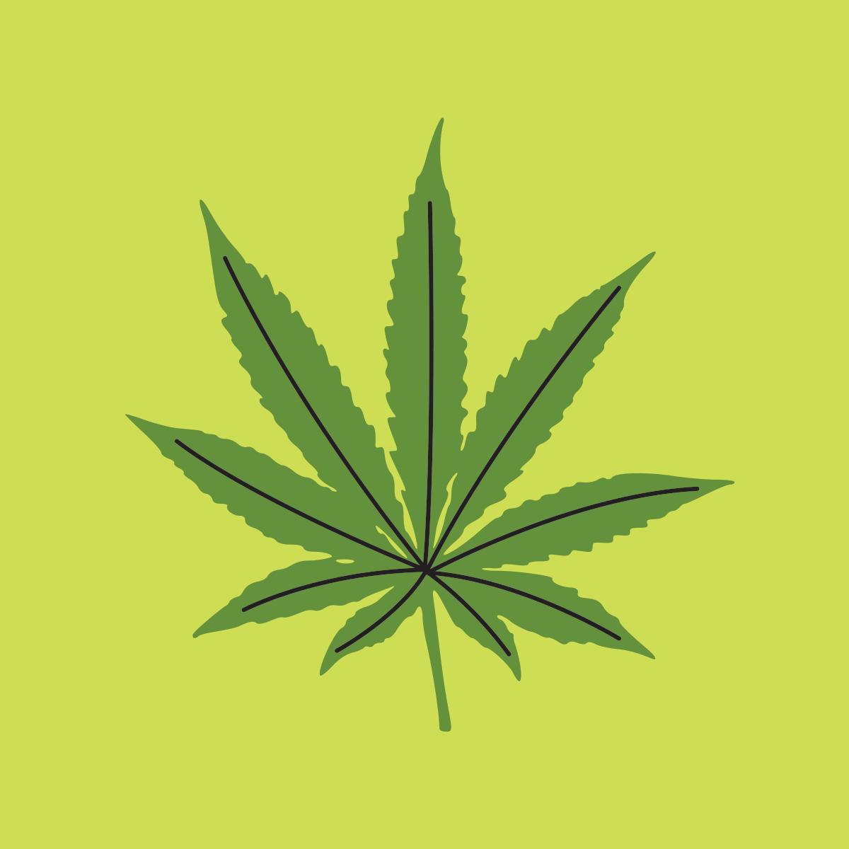 73 legalizing marijuana