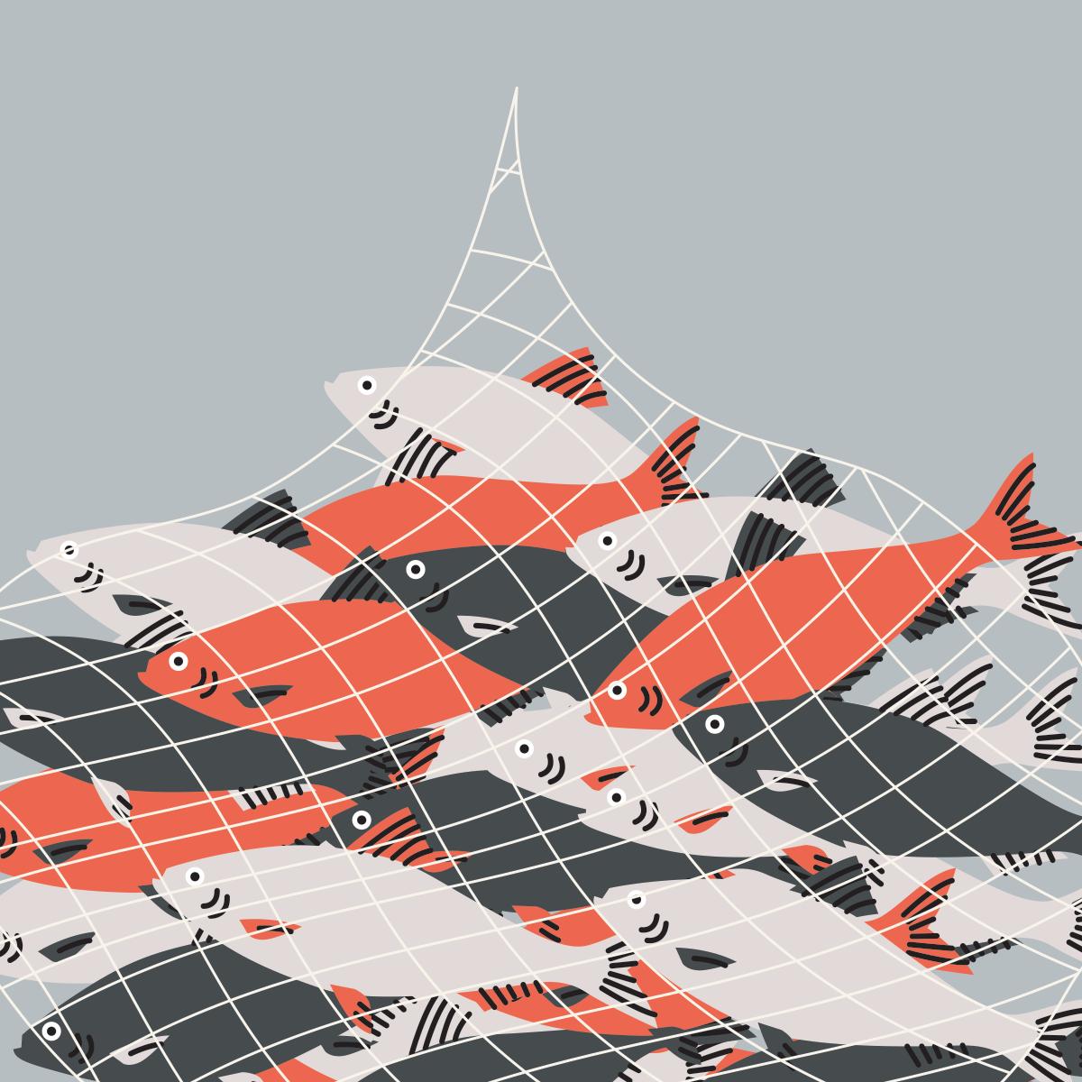 72 overfishing