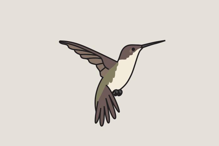 113 birds