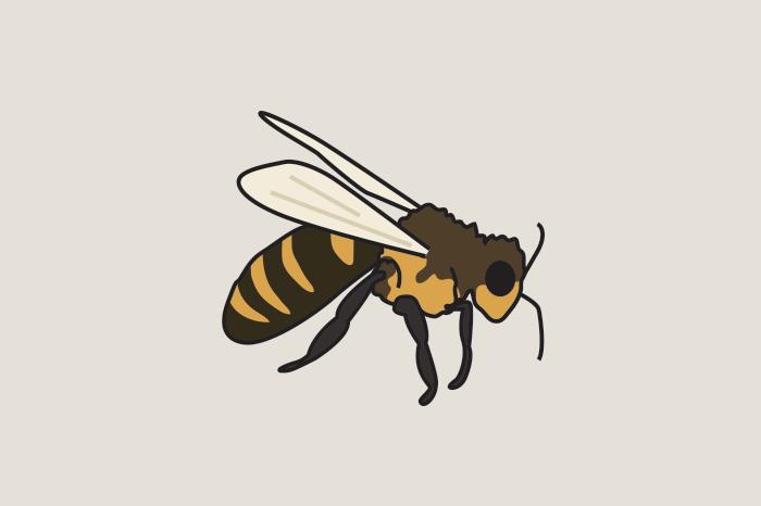 113 bugs