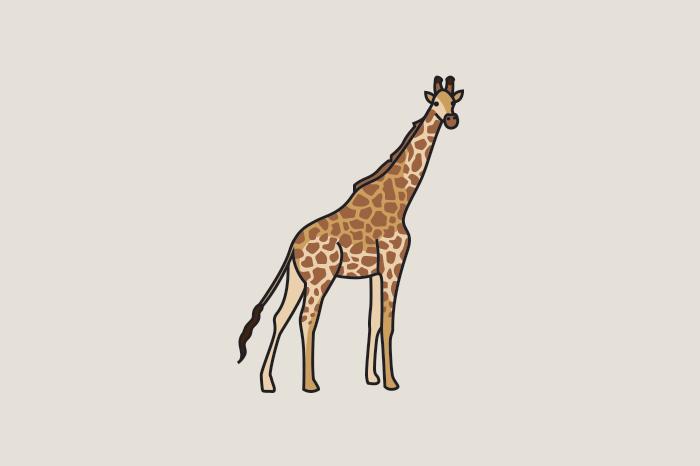 113 african animals