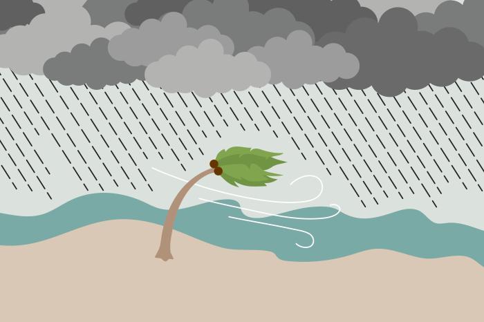 82 hurricanes