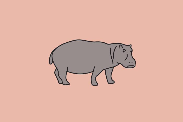 117 hippos