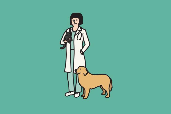 117 veterinarians