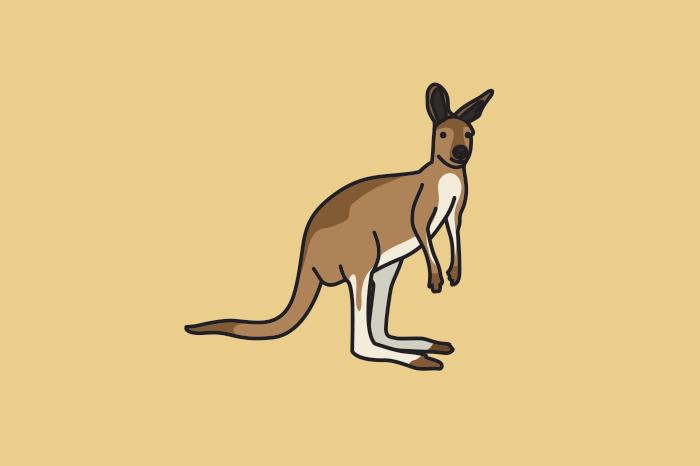 117 kangaroos