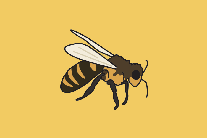 117 honeybees