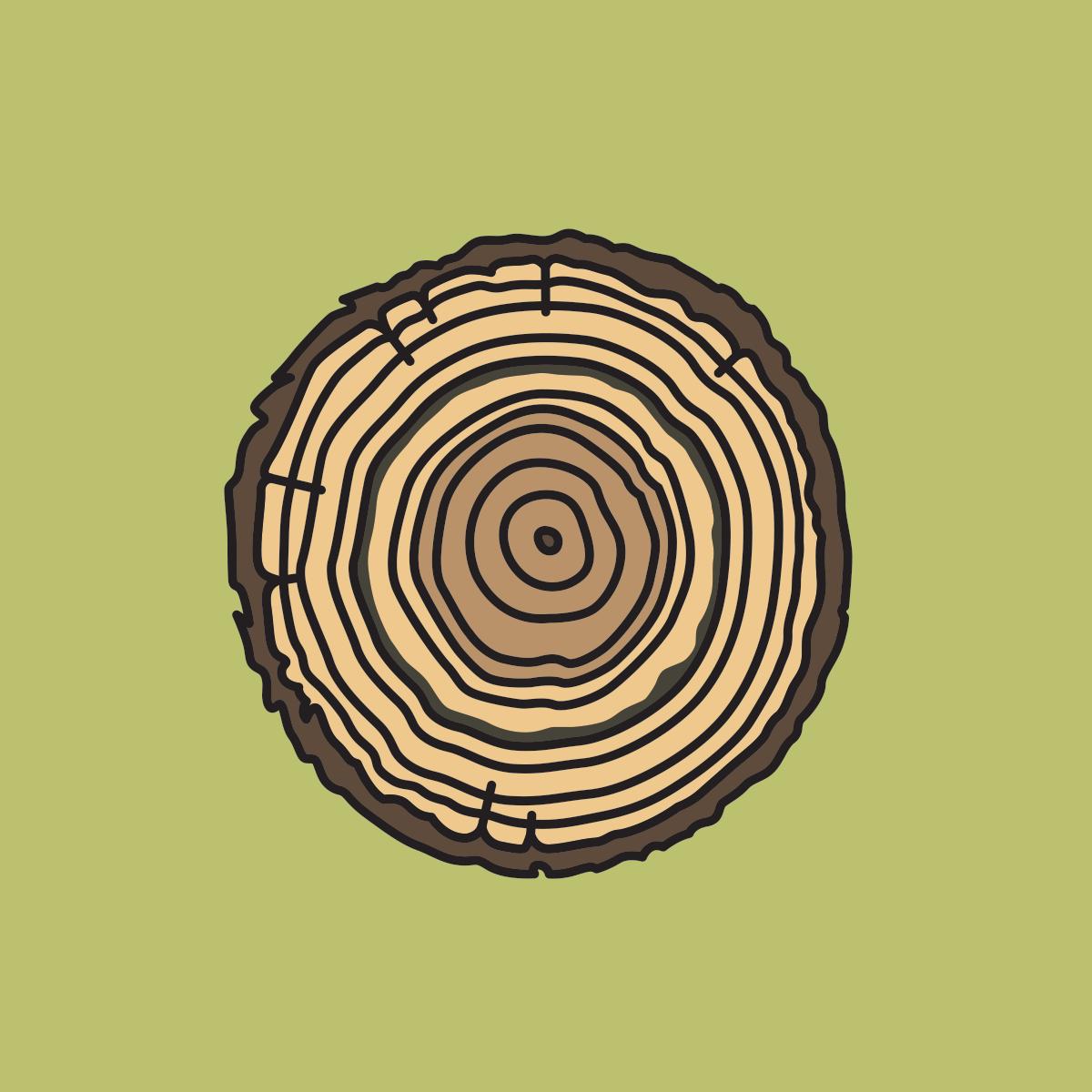 117 tree rings