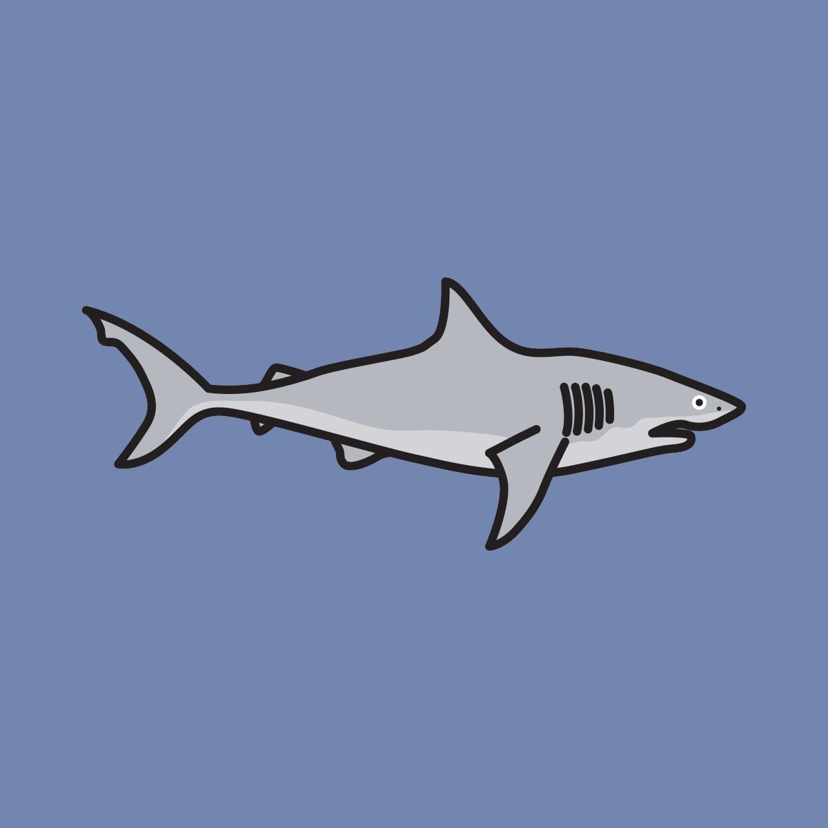 117 sharks